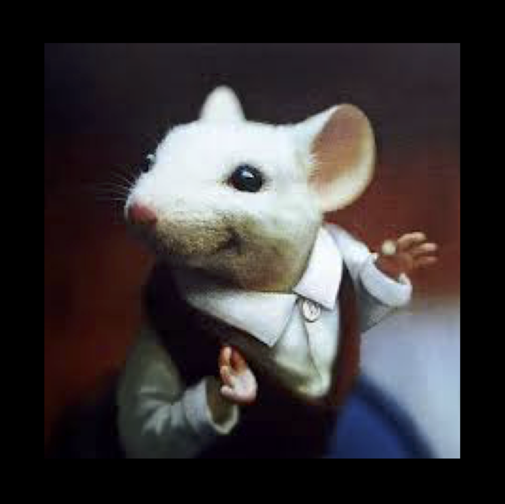 Stuart Little -