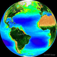 Climate Science Research - I am conducting evolutionary climate science research funded by the Simons Foundation and Gordon and Betty Moore Foundation at the University of Southern California in collaboration with the University of Edinburgh and and the University of Technology, Sydney. We are combining a novel ecological ocean-modeling framework with evolutionary theory in order to investigate the evolutionary mechanisms through which marine microbial populations adapt to changing environmental conditions and the subsequent impacts on oceanic ecosystems and biogeochemistry.