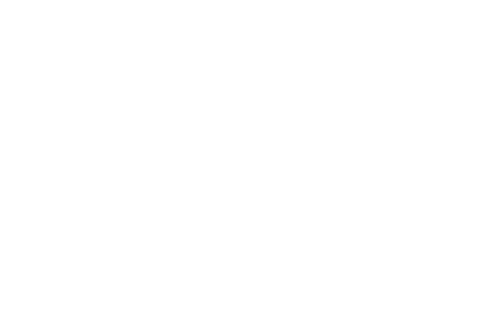 OFFICIALSELECTION-HotSpringsInternationalWomensFilmFestival-2019.png