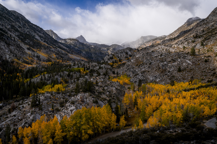 Bishop Creek Valley  Fall Colors