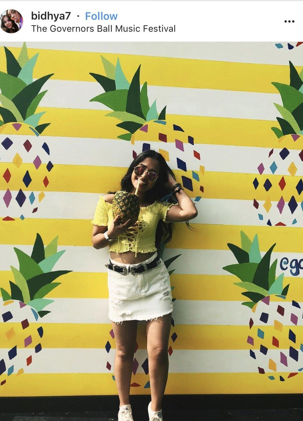 PineappleTag.jpg