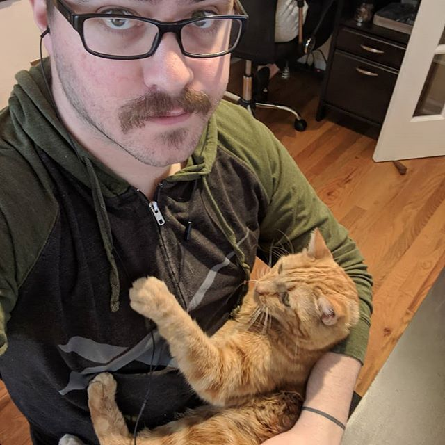 """""""Work from home full-time,"""" they said. """"You'll get so much work done,"""" they said. Apparently, """"they"""" didn't live with a needy cat who requires full-time cuddles. This is life at my desk. Every. Single. Day. 😭 . . . #damncat #cutecat"""