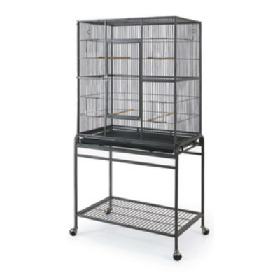 Choosing a Cage:   Buy the biggest most practical cage you can afford, preferably the cage should be new, or if using a second-hand cage, it should be thoroughly disinfected with bird safe cleaner.  ood quality cages have stands, metal seed catches and some styles have an open top. They don't like round cages, look for a cage with at least four corners.The minimum size cage would be 60cm x 60cm.  Cockatiels should have enough room in the cage to turn around, stretch their wings and fly a small distance freely. Don't overcrowd the cage with toys