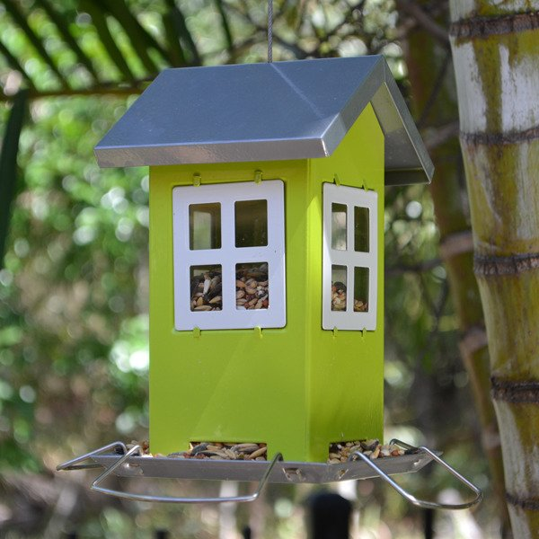wild bird feeder aussie cottage