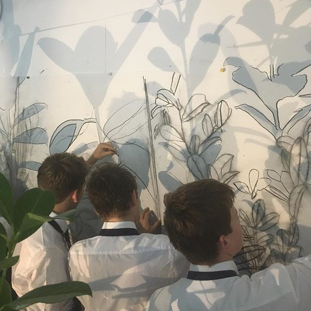 Exciting panoramic plant study with TWD. #jimdine #noviboys
