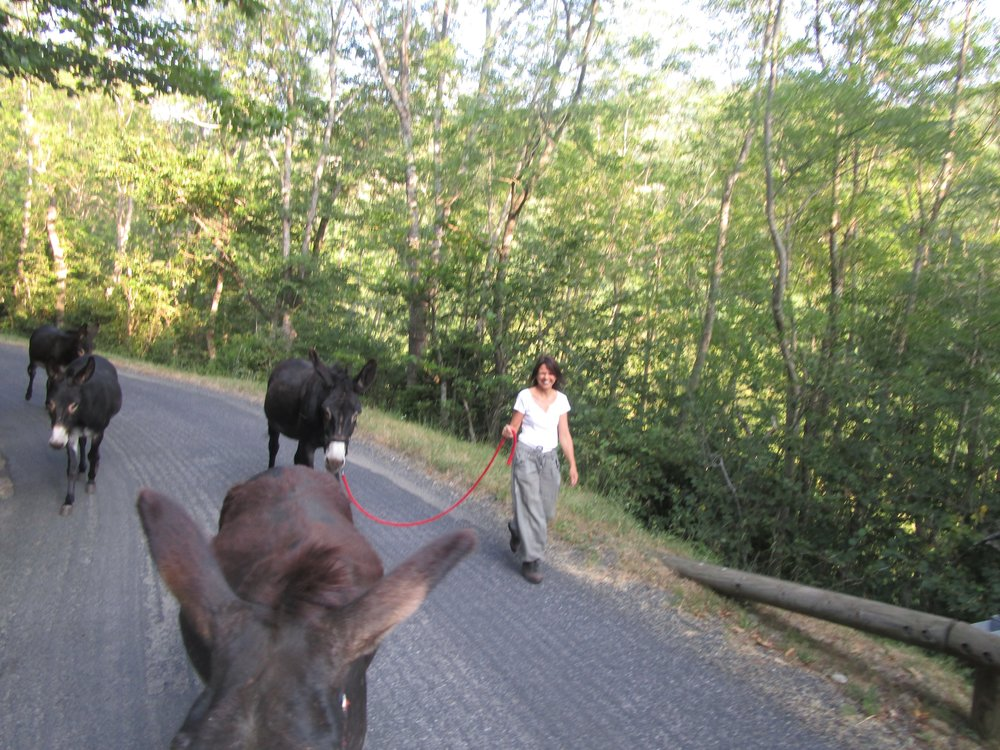 Corinne & donkey road block