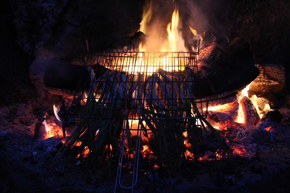 Cooking 'calcots', Catalan-style, on the fire
