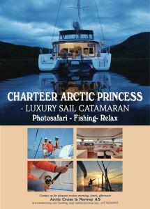 Arctic Princess - plakat2