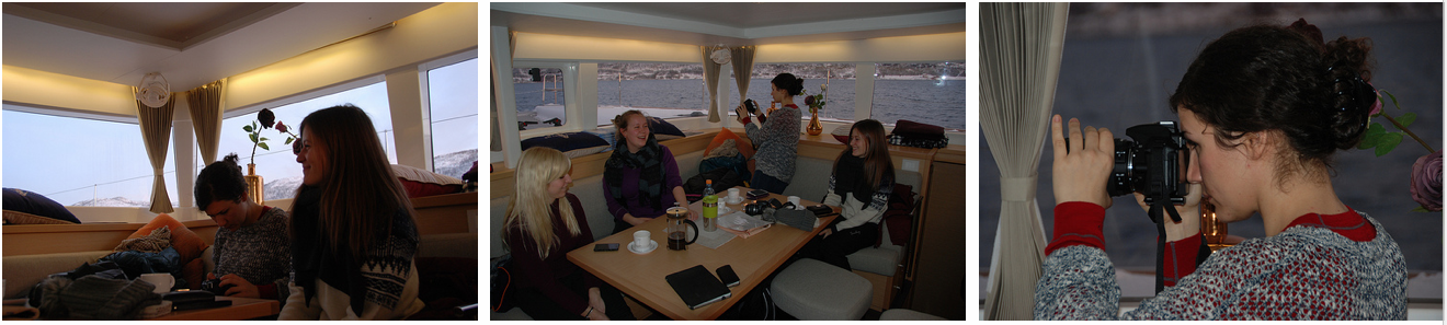 Whalesafari Fun and relax | Arctic Princess