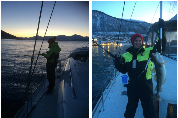 Whalesafari Whalewatching Fishing Tromsø Arctic Princess
