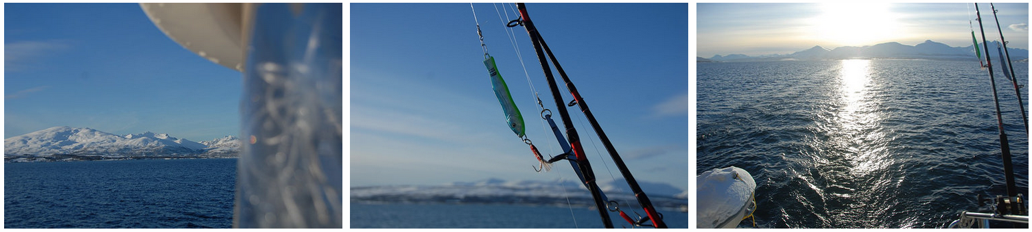 #Tromso |#Fishing | February 23