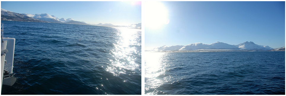 Sailing | Tromso |Fishing | Sun | Norway