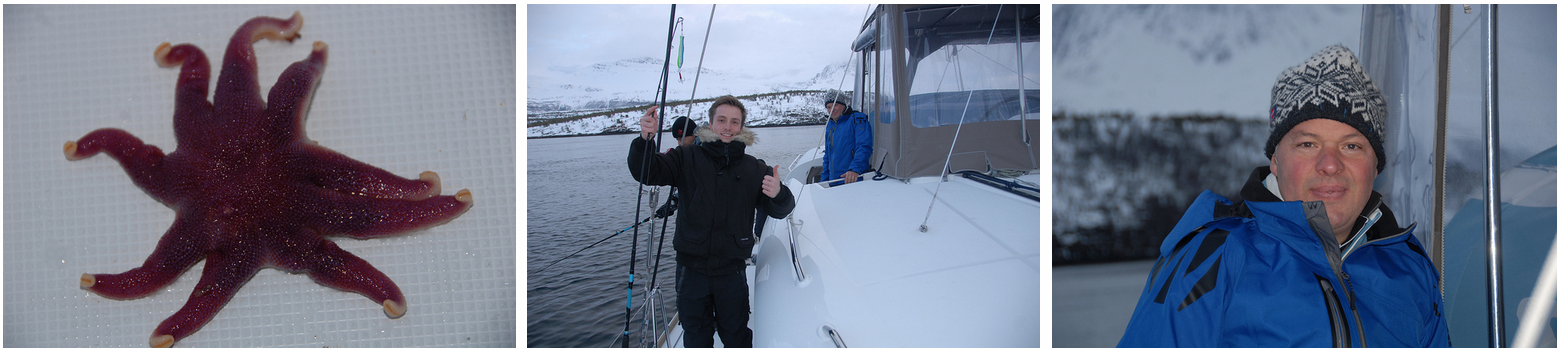 Fjordcruise | Sailing | Fishing | Tromso | Norway