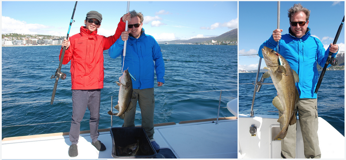 #Fishing | BigCod | #Tromso