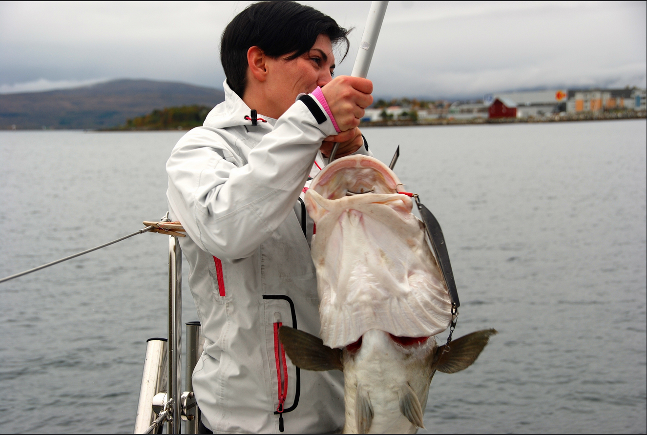 Fishing | Big Cod | Tromsoe