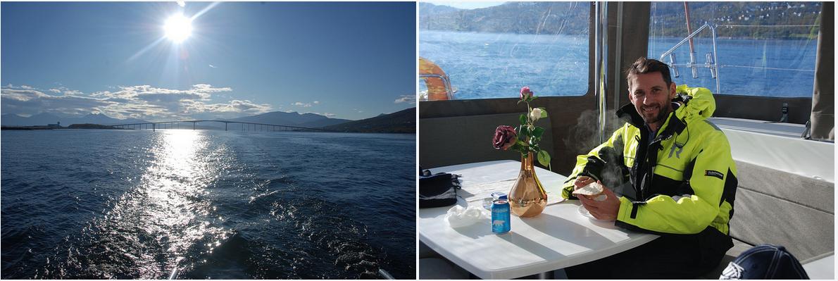 #Fjordcruise |#Tromsoe | Dolphin |ArcticPrincess