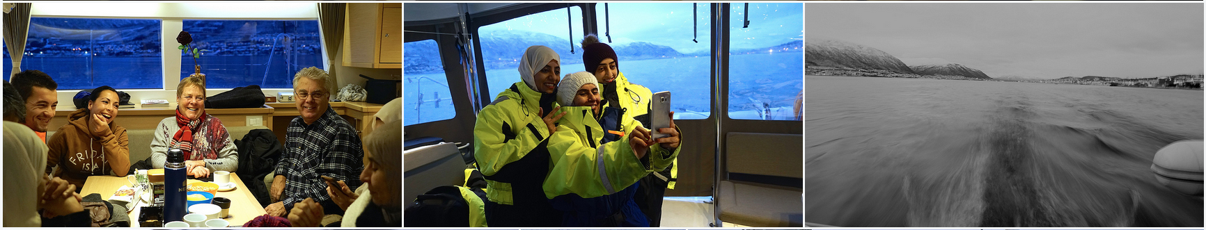 Arctic Princess | Whalewatching | Tromso