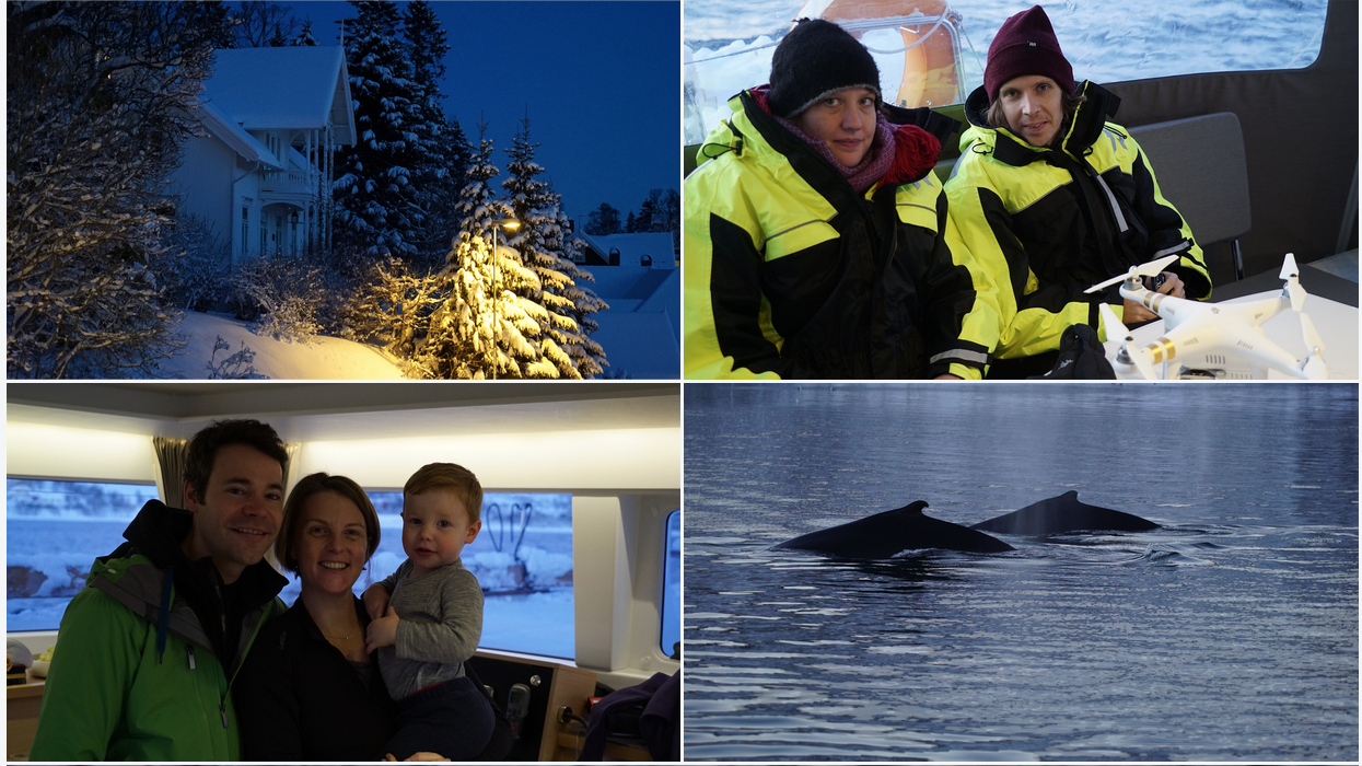 Whalewatching | Tromso | Arctic Princess