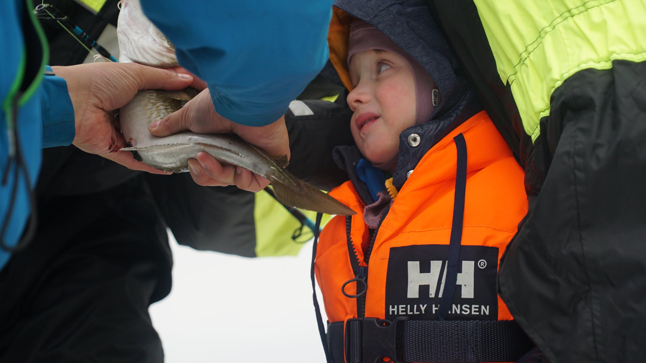 #Fisketur | Fiskeglede | #Tromsø