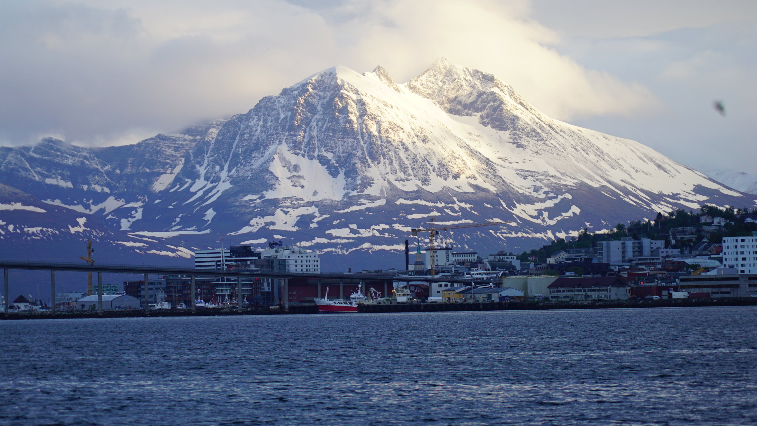 #Midnightsun Sailing |Arctic Princess |#Tromsø