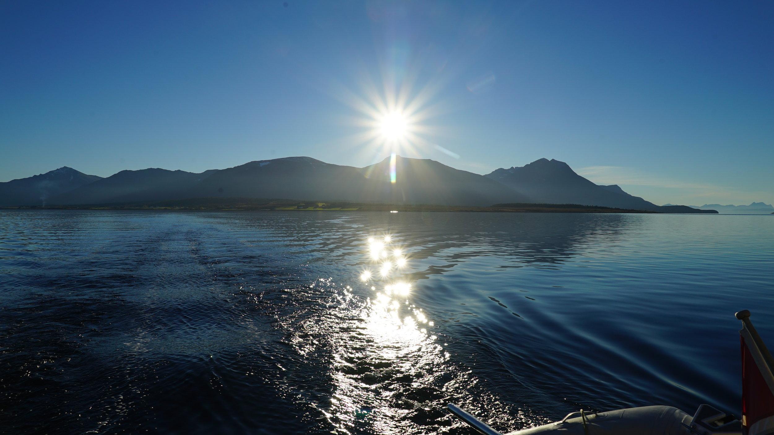 VIP Sailing | Guests from #Norway | Arctic Princcess | #Tromsø
