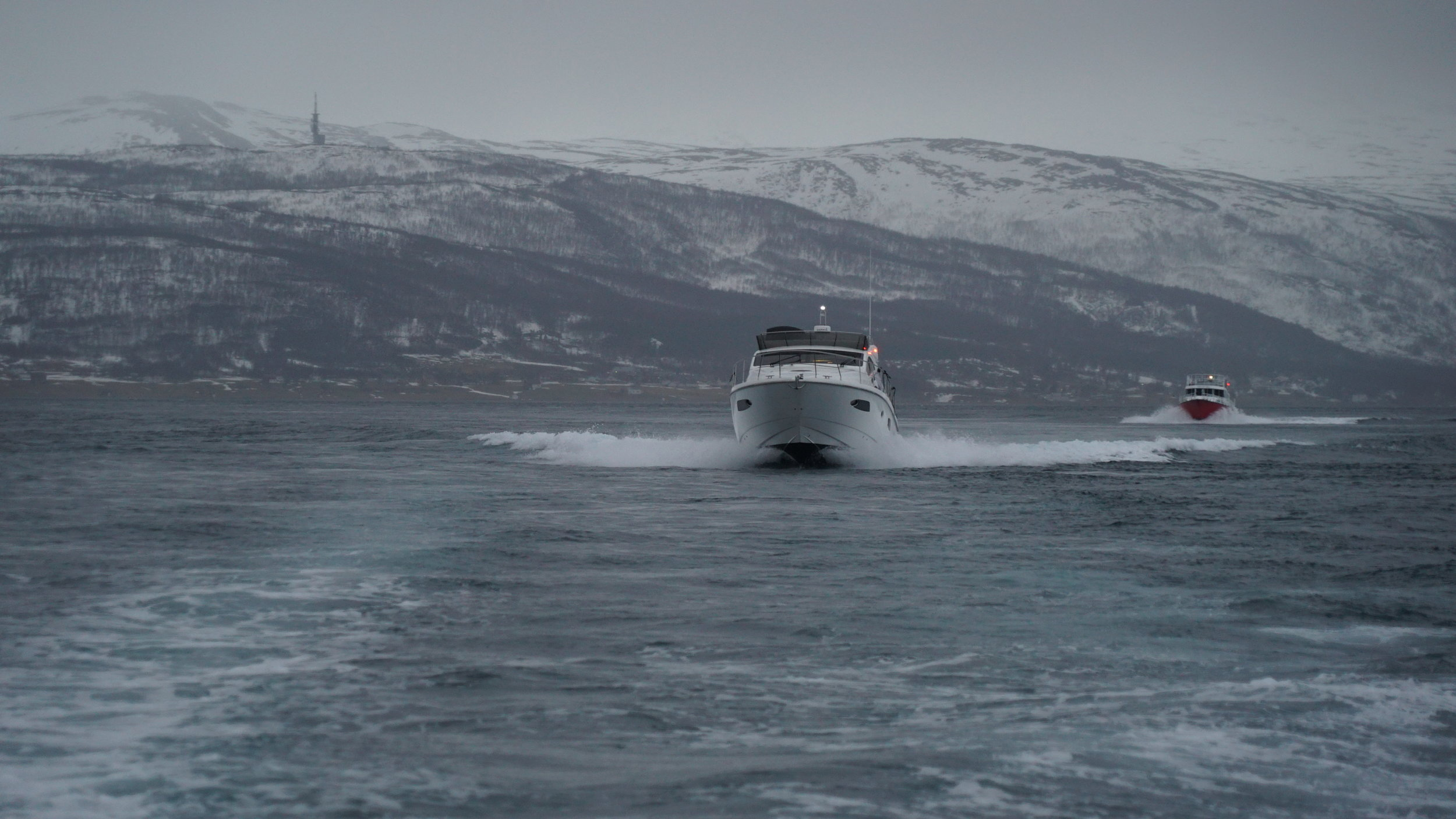 #Orcasafari | #Arctic Queen | #Tromso | Guests from Switzerland Spain