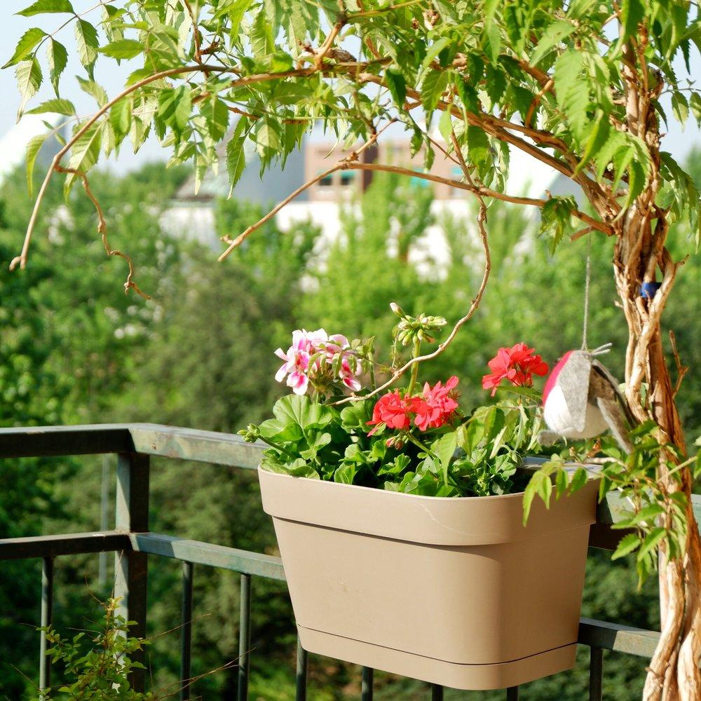 Balcony_02.jpg