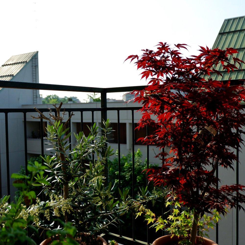 Balcony_04.jpg