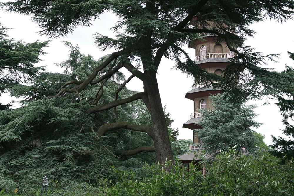 Kew-Gardens-17.jpg