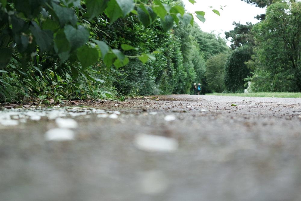 Kew-Gardens-18.jpg