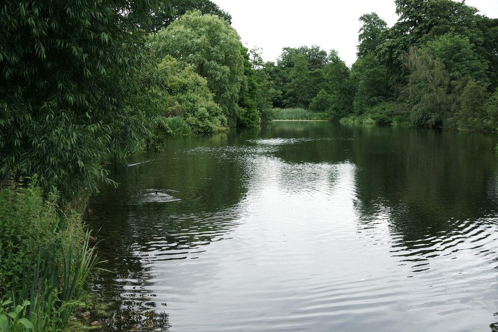 Kew-Gardens-21.jpg