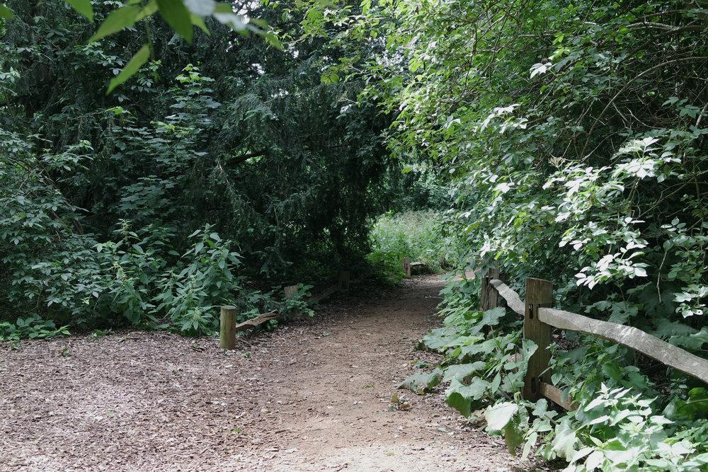 Kew-Gardens-27.jpg