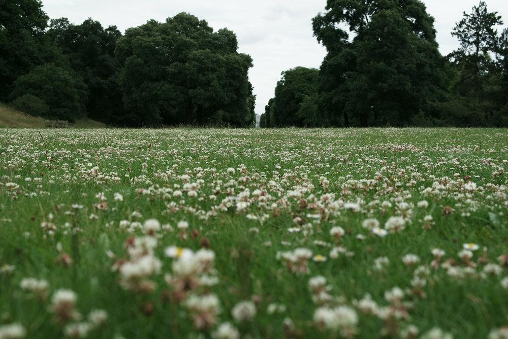 Kew-Gardens-30.jpg
