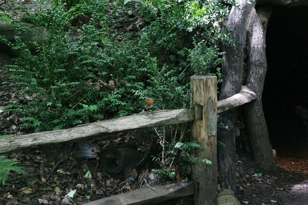 Kew-Gardens-29.jpg