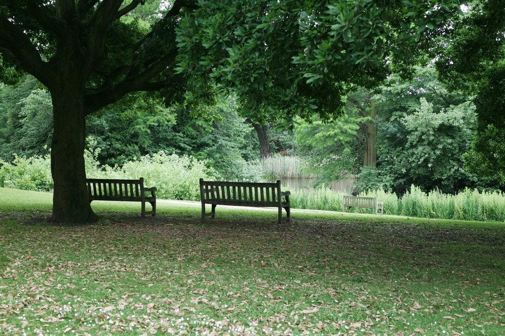 kew-gardens-31.jpg