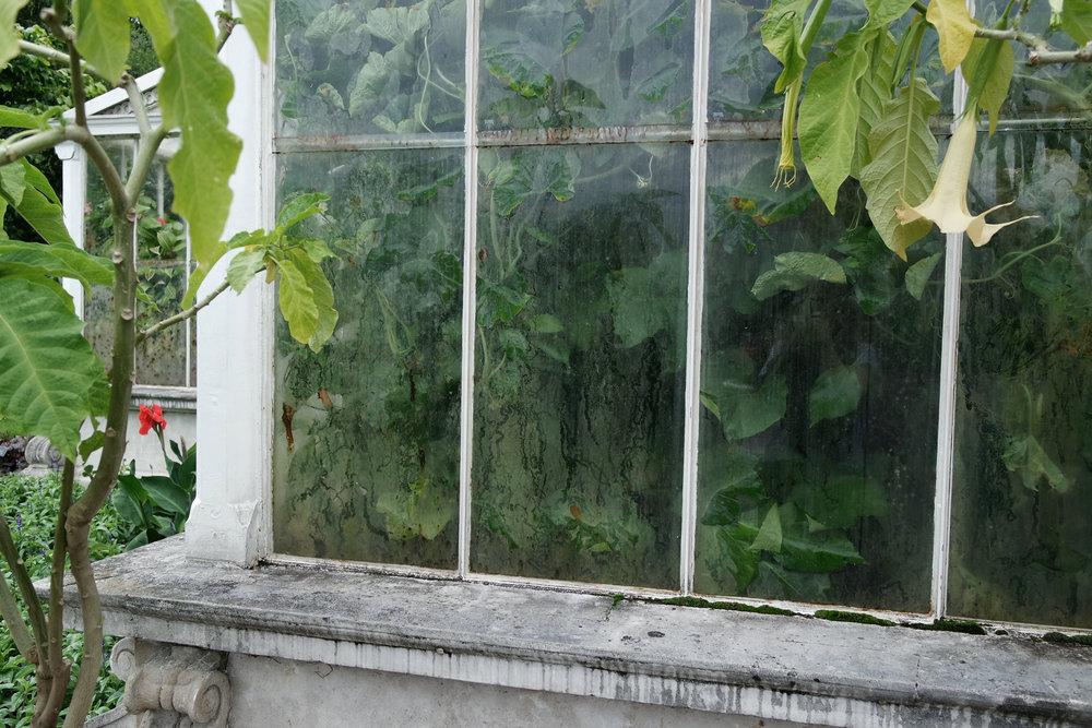 Kew-gardens-34.jpg