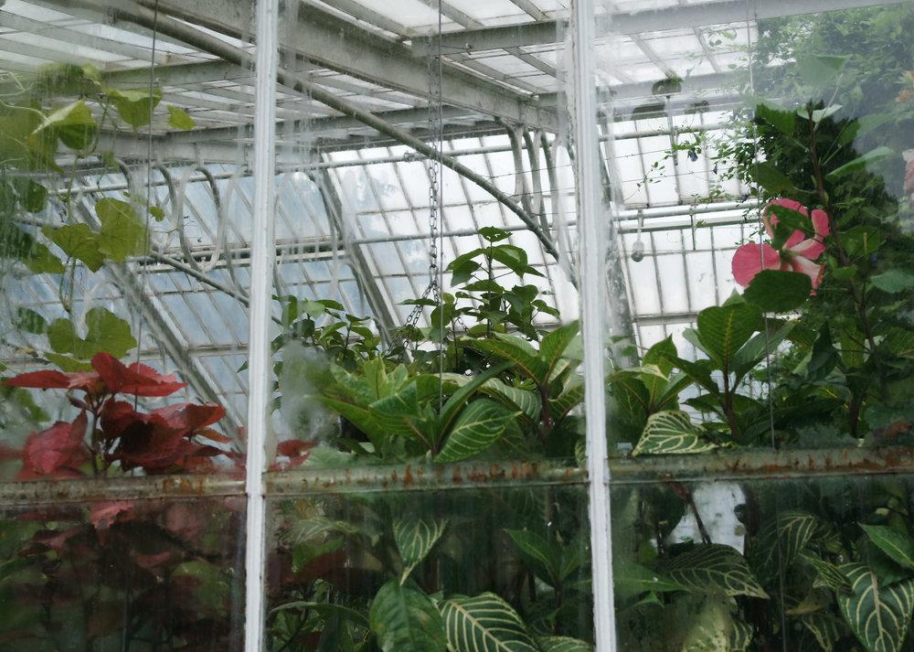 Kew-Gardens-35.jpg