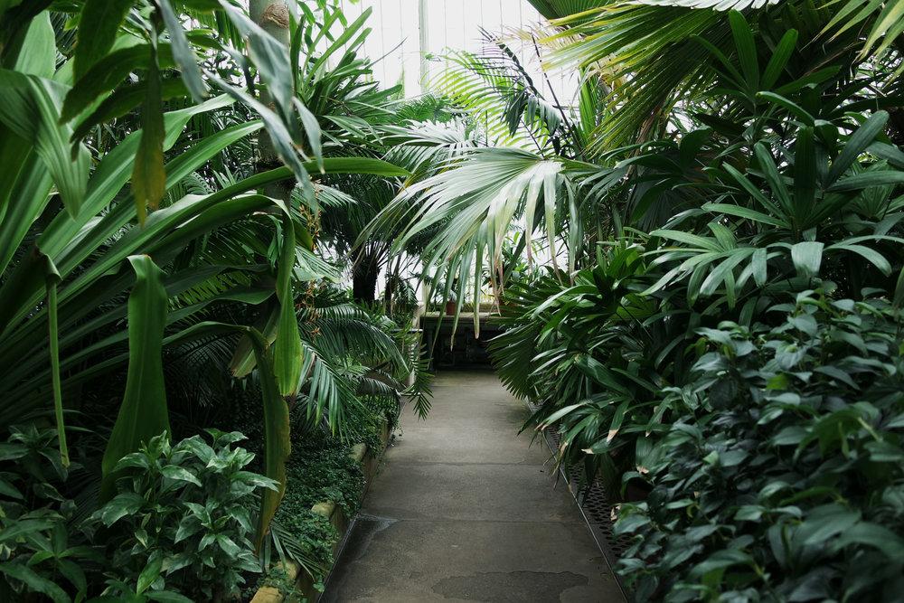 Kew-Gardens-40.jpg