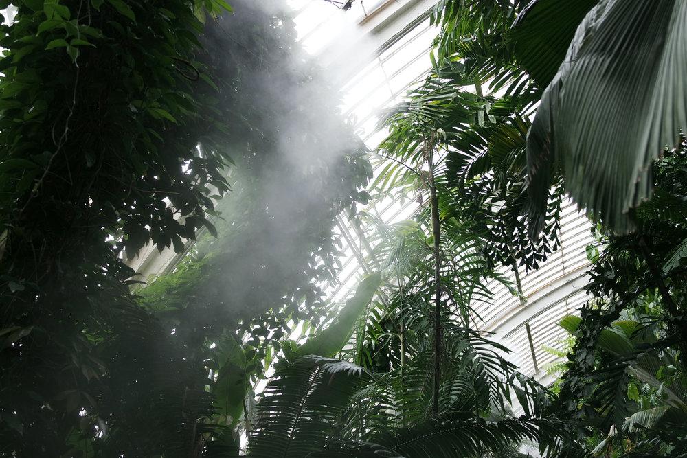 Kew-Gardens-42.jpg
