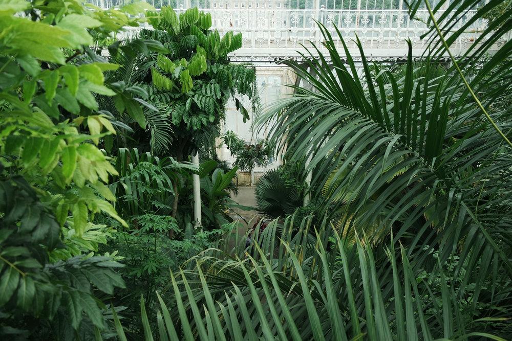 Kew-Gardens-48.jpg