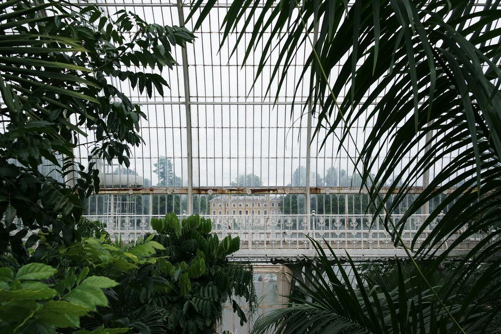 Kew-Gardens-49.jpg