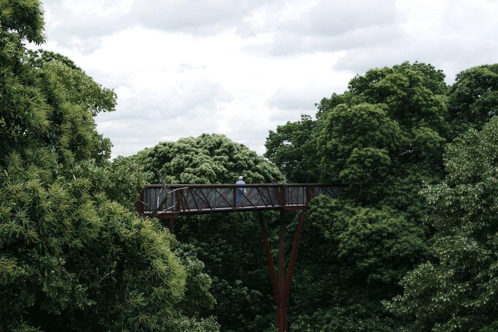 Kew-gardens-50.jpg