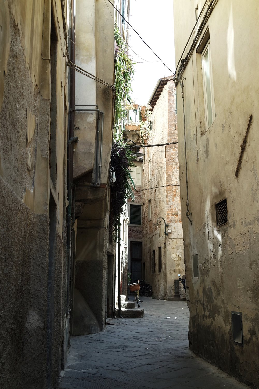 Lucca_05.jpg