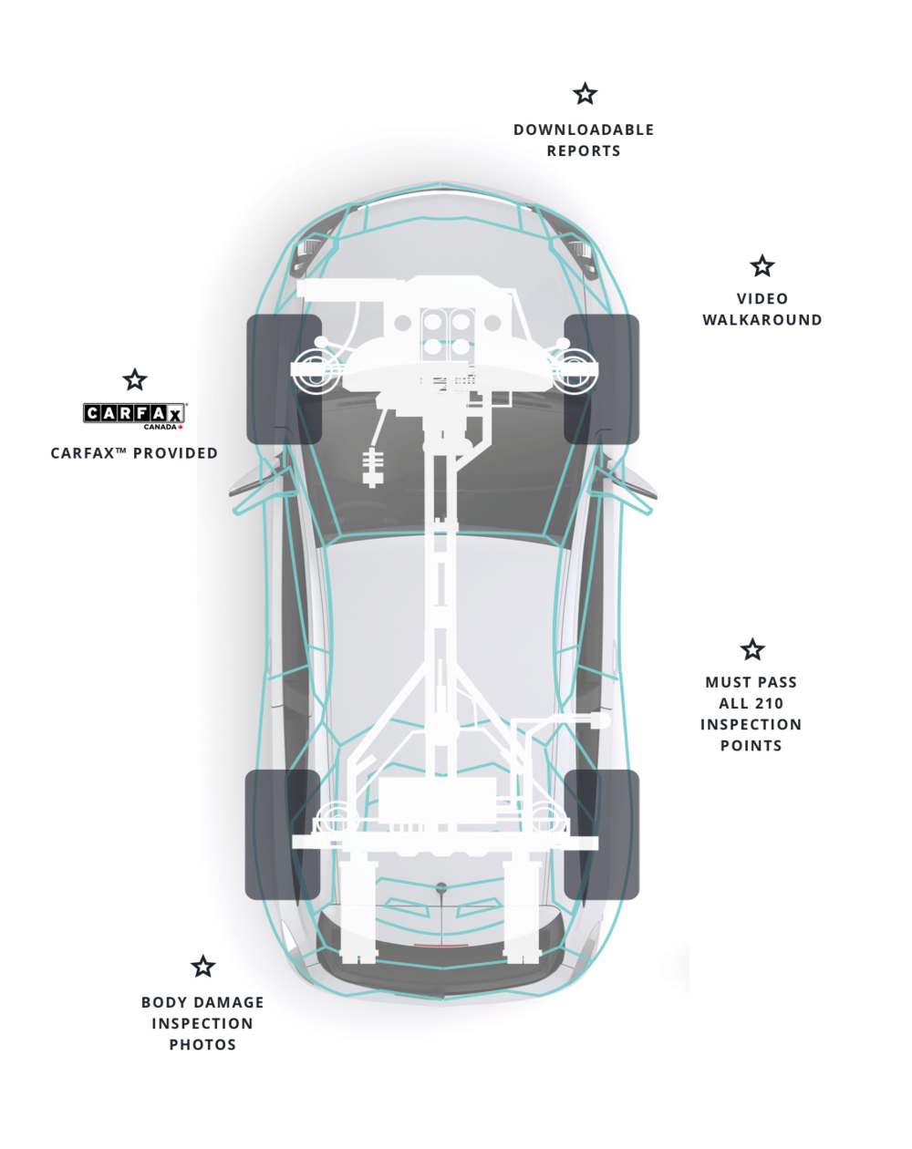 Vehicle Diagram White.png