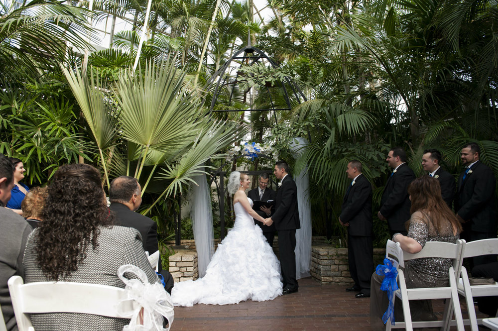 Columbus Ohio wedding officiant, Damian King at Franklin Park Conservatory