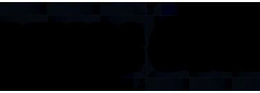 NYSS_logo_V1.png