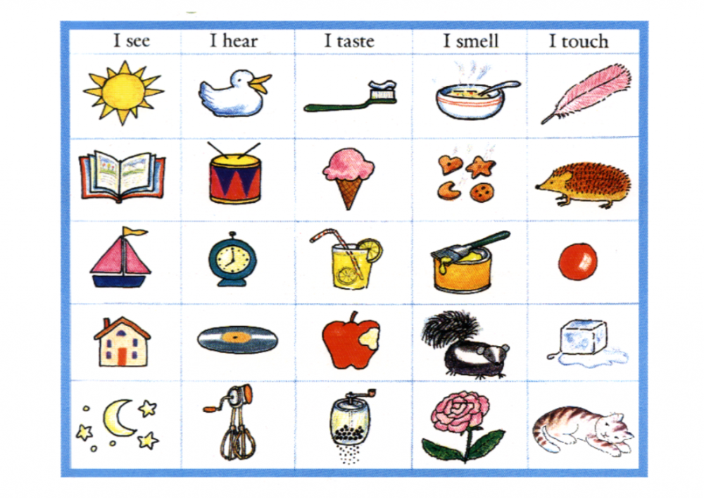 15My-five-senses-lessonEng_006-724x1024.png