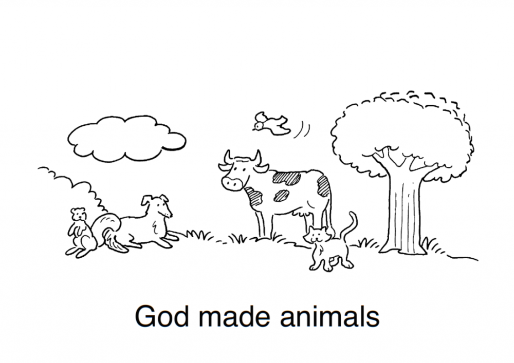 9God-made-many-animals-lessonEng-_007-724x1024.png