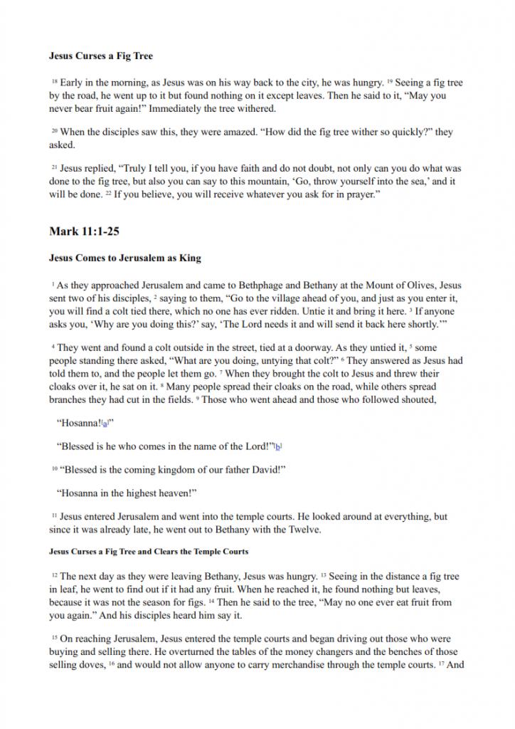 25.-Jesus-Goes-to-Jerusalem-lessonEng_005-724x1024.png