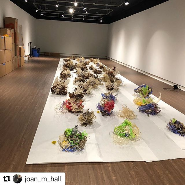 Repost from @joan_m_hall as we install her solo show Global Contamination: A Gulf Project. Join the Meadows as we welcome Joan for an artist talk at 4pm on Thurs. 1.17.19 with the reception for all three Spring '19 Exhibits at 5. #FreeAndOpenToThePublic #contemporarysculpture #LouisianaBayouArt #GulfCoast #EcoActivism in #contemporaryart #handmadepaper #318ART #joanhall #papersculpture